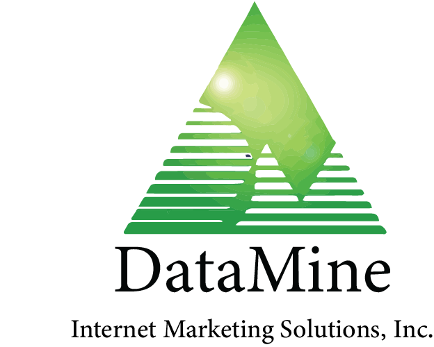DataMine Internet Marketing Solutions